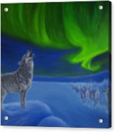 Northern Lights Night Acrylic Print