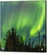 Northern Lights Sapmi Forest Karasjok Norway Acrylic Print