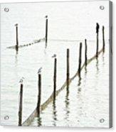 Northern Sea Landscape Acrylic Print