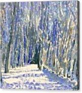 Norwalk River Valley Trail Acrylic Print