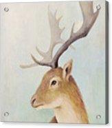 Norway Deer Acrylic Print