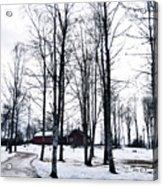 Norwegian Forest Acrylic Print