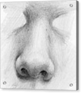 Nose Study - Front Acrylic Print