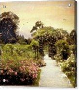 Nostalgia Of Roses Acrylic Print