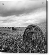 Nostalgia - Hay Bales In Field In Black And White Acrylic Print