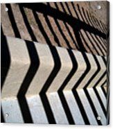 Not A Zebra Acrylic Print