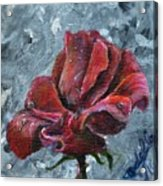 Not Every Rose Is Perfect Acrylic Print