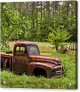 Not Forgotten Acrylic Print by Debra and Dave Vanderlaan