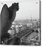 Notre Dame Gargoyle Acrylic Print