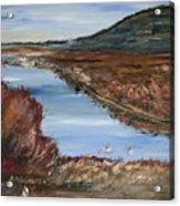 Novato Bay Inlet Acrylic Print