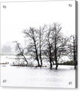 November Flood 1 Acrylic Print