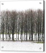 November Flood 2 Acrylic Print