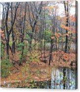 November Rainy Day In Waltham  Acrylic Print