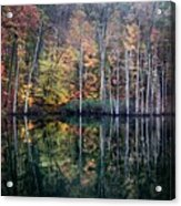November Ripples Acrylic Print