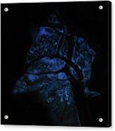Nocturne Acrylic Print