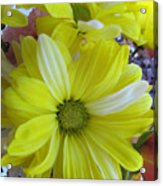 Now It Is Time For Spring Acrylic Print