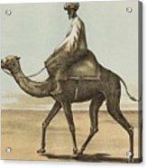 Noyes, Edward , Riding Camel Acrylic Print