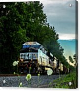 Ns 62w With Blurred Flowers Acrylic Print