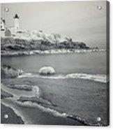 Nubble Light Black And White Acrylic Print