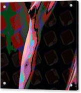 Nude 11 Acrylic Print
