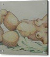 Nude  2006 Acrylic Print