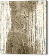 Nude Behind Soaped Window Acrylic Print