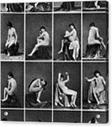 Nude Posing, C1875 Acrylic Print