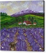 Nui In Lavender Field Acrylic Print