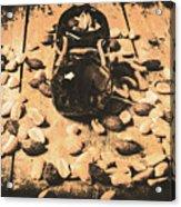 Nuts About Vintage Still Life Art Acrylic Print