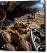 Nuts And Spices Series - One Of Six Acrylic Print