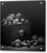 Nuts In Black And White Acrylic Print