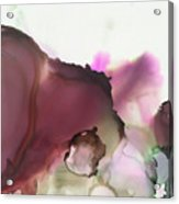 Nutshell Acrylic Print