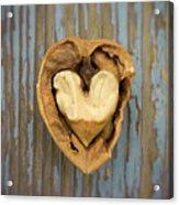 Nutty Love Affair Acrylic Print