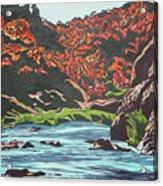 Nyangombe River Acrylic Print