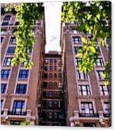 Nyc Building With Tree Overhang Acrylic Print