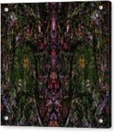 Oa-1909 Acrylic Print