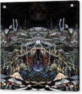 Oa-3975 Acrylic Print