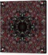 Oa-4628 Acrylic Print