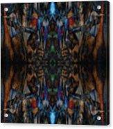 Oa-4629 Acrylic Print