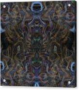 Oa-4630 Acrylic Print