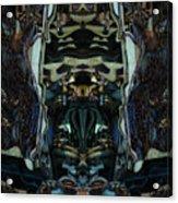 Oa-4922 Acrylic Print