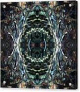 Oa-4924 Acrylic Print