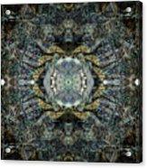 Oa-4990 Acrylic Print