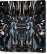 Oa-5047 Acrylic Print