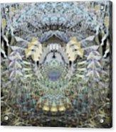 Oa-5049 Acrylic Print