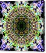 Oa-5134 Acrylic Print