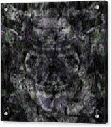 Oa-6035 Acrylic Print