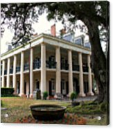 Oak Alley Plantation Acrylic Print by Perry Webster