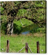 Oak Creek Guards Acrylic Print