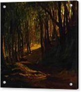 Oak Grove At San Terenzo Acrylic Print